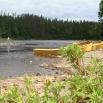 Rivière Hummer, le repère des prédateurs