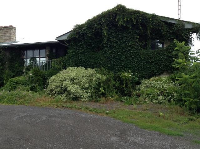 la maison du viticulteur est-ce ce qu'on appelle une maison verte?