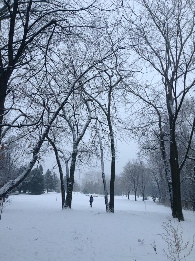 Promeneur solitaire en ce matin froid de décembre.