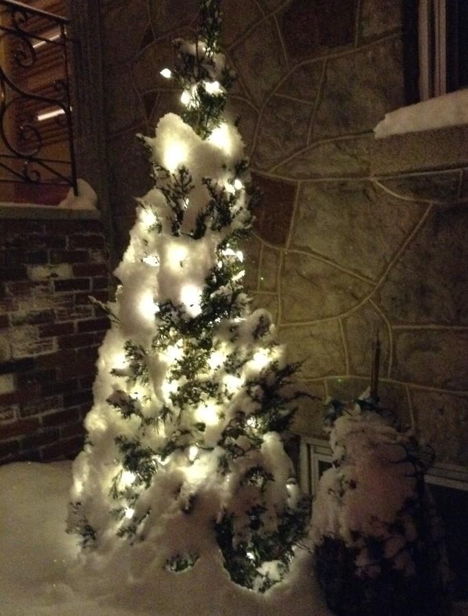 Le plus simple des arbres enluminés excite Mamie en cavale qui ne boude jamais les occasions de fêter.
