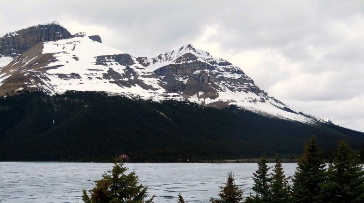 Lac Bow et glacier Bow (3)