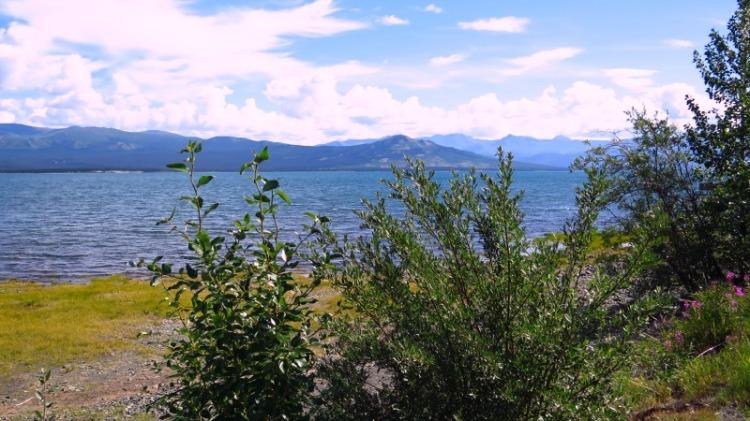 Burwash Kluane lac (9)
