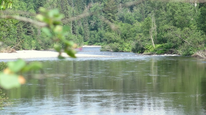 Willow river (4)