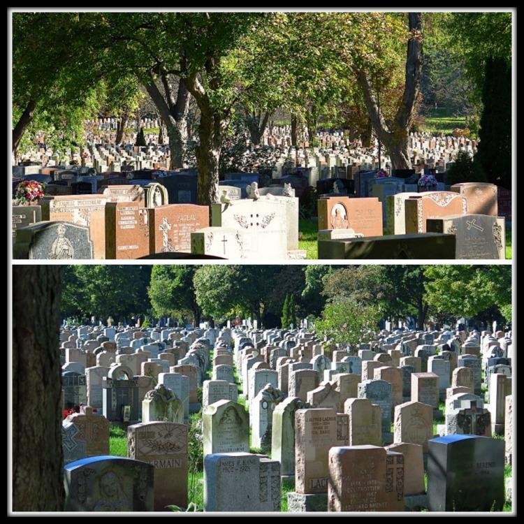 cimetière NDN (35)