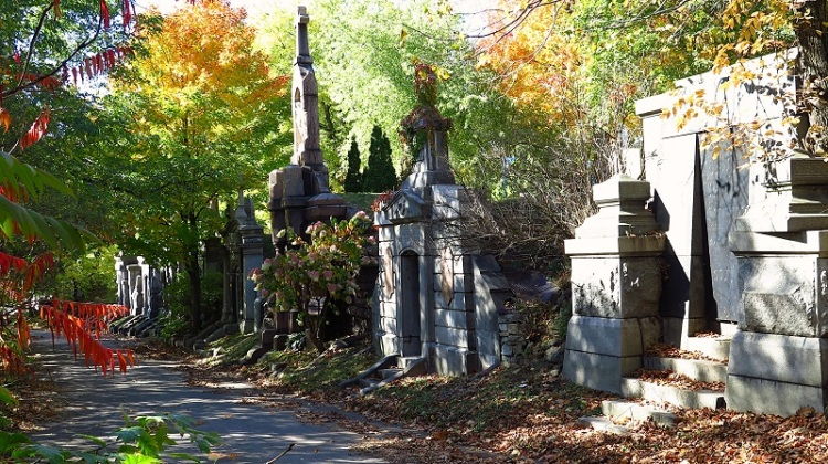 cimetière NDN (38)