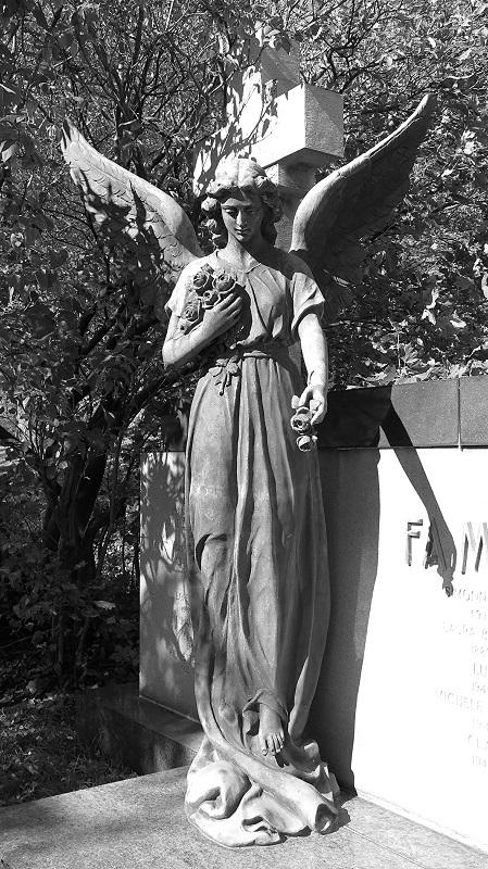 cimetière NDN (43)