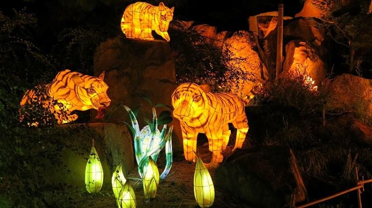 Lanternes 14 (48)