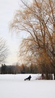 Je prends le temps de m'imprégner de ce calme qui veille le parc.
