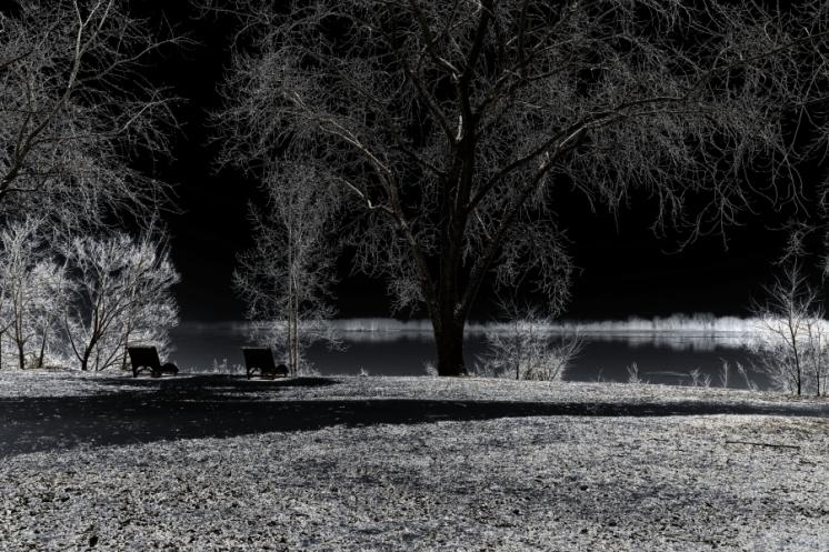parc Bellerive