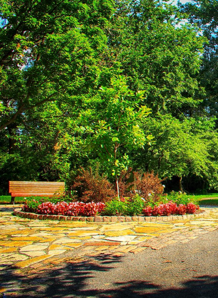 jardin botanique05