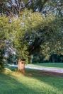 parc Maisonneuve7